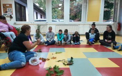 Dan dejavnosti: Gozd